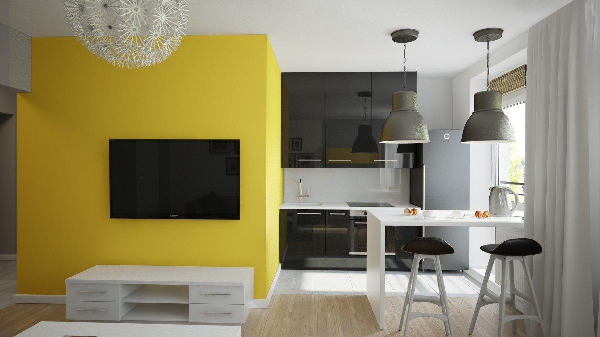 dizajn proekt kvartiry studii - Идеи для ремонта квартиры-студии